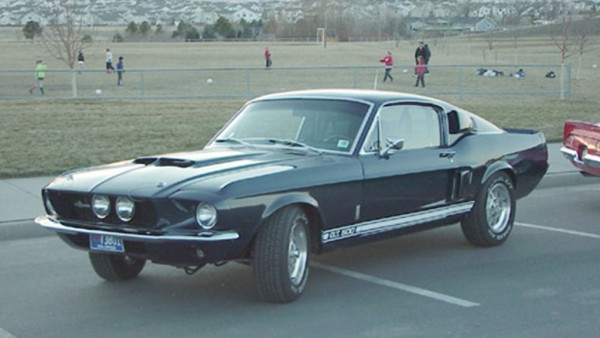 shelby 2
